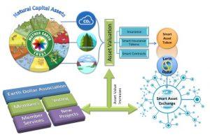 how asset backing works, asset backing earth dollar